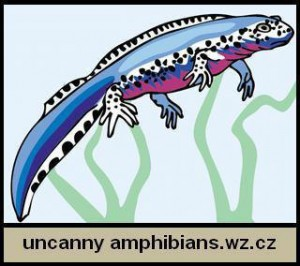 Uncanny Amphibians